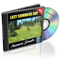 Sommer Tag (Mp3)